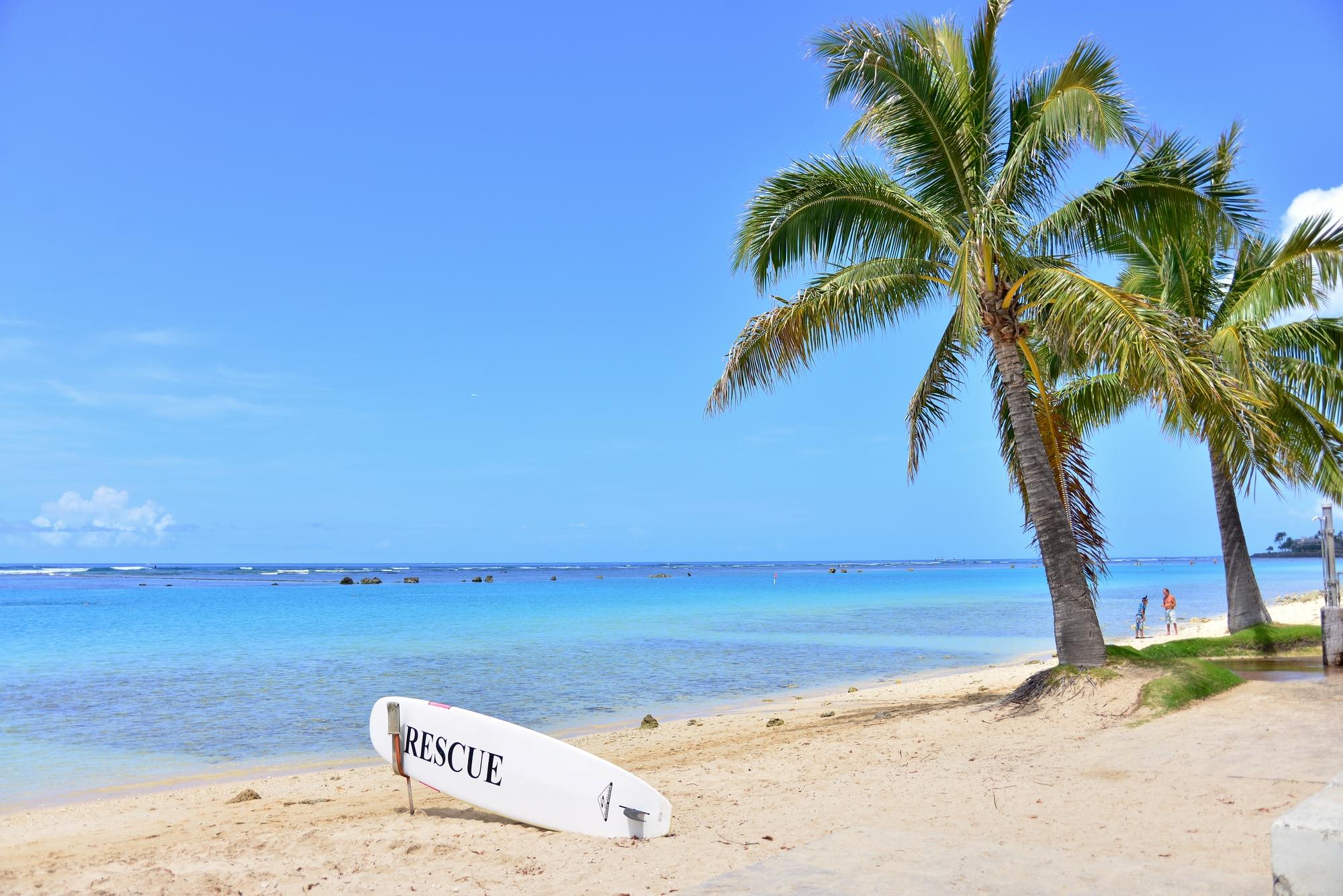 ハワイで人気な定番おみやげを10個厳選!食べ物と雑貨を特集♪